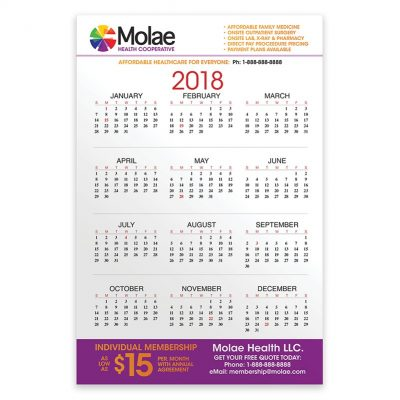 "PaperSplash 11"" x 17"" Wall Calendar"